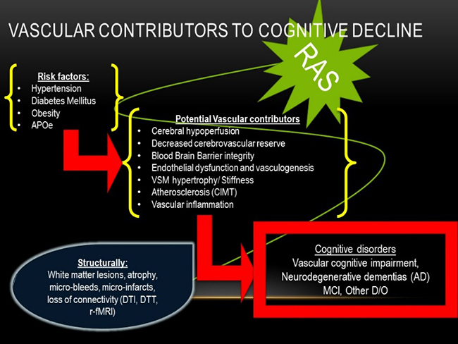 Vascular contributors to cognitive disorders